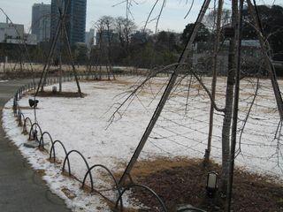 芝公園・東京タワー 009