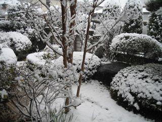 雪の朝 004