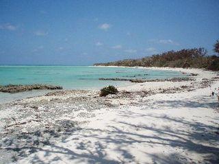 星の砂浜(竹富島)