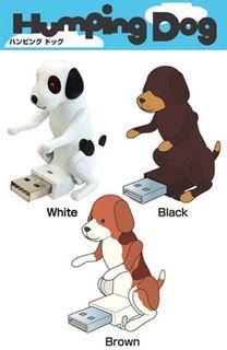 Humping Dog2